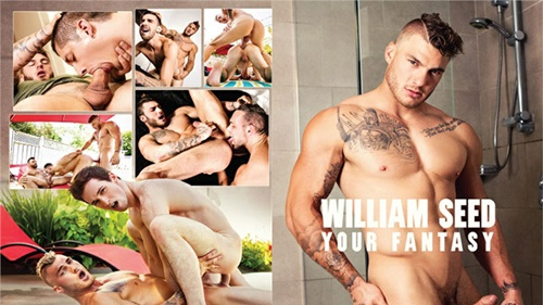 William Seed: Your Fantasy