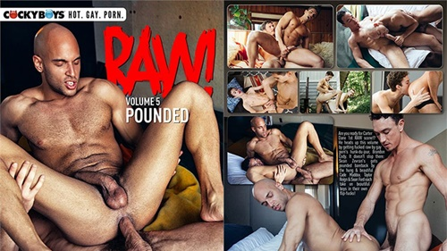 Raw! Vol. 5: Pounded