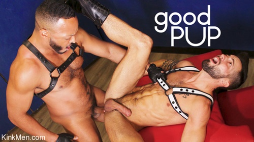 Dillon Diaz and Casey Everett Good Pup